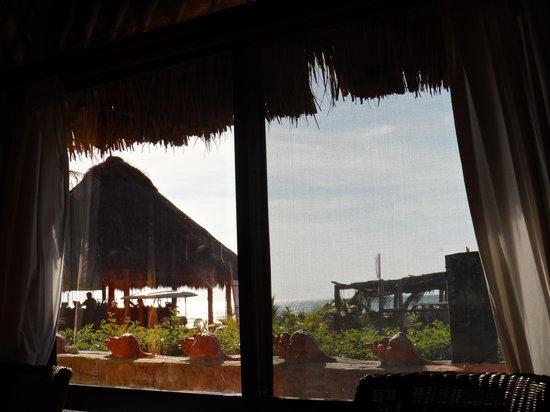 Casa Maya Holbox: La vista desde mi cuarto