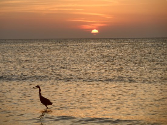 Casa Maya Holbox: El atardecer en la Playa del Hotel