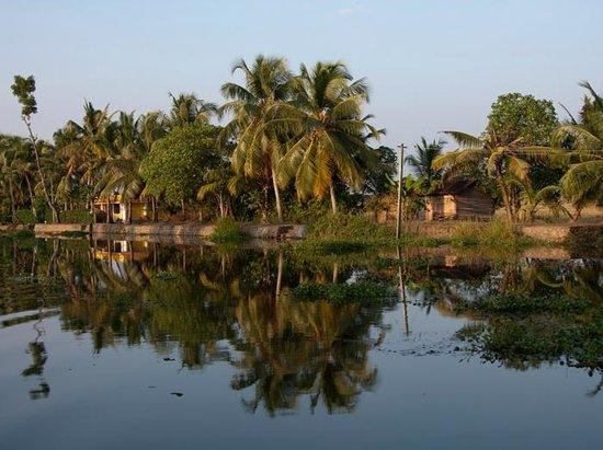 Kochi (Cochin), India: Kochi