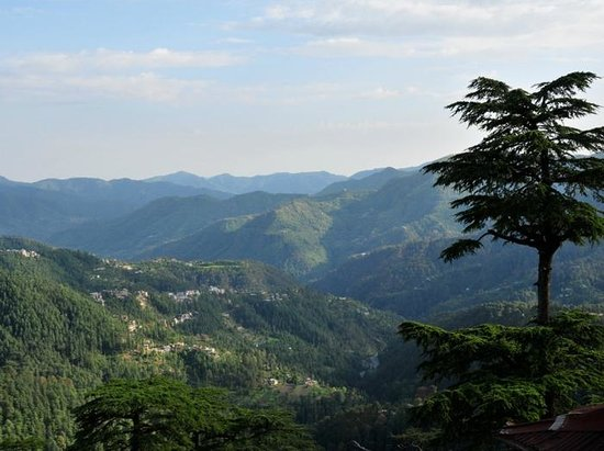 Shimla District