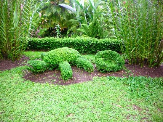 Hotel Arenal Montechiari: Turtle hedges.