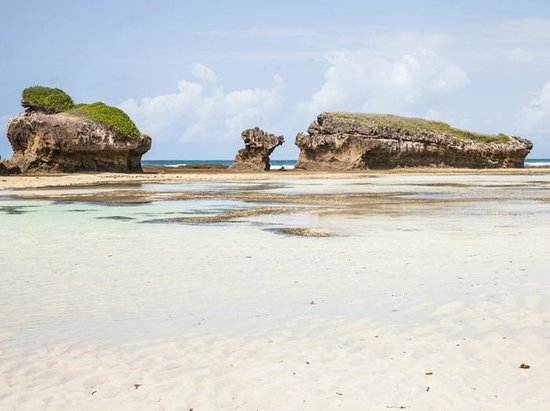 Top 9 Things to do in Watamu, Kenya