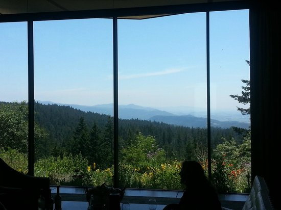 CADE Winery: Tasting view