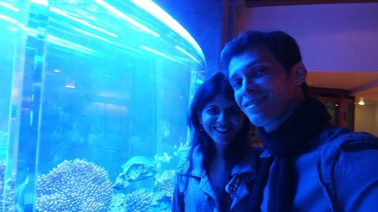 Zócalo Central: Una pescera hermosa en el lobby