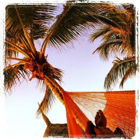 Holbox Hotel Casa las Tortugas - Petit Beach Hotel & Spa: Un momento de relax en la hamaca frente al mar