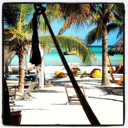 Holbox Hotel Casa las Tortugas - Petit Beach Hotel & Spa: Vista desde la habitación, el mar no puede estar más cerca