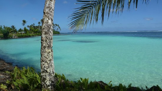 Le Valasi's Beach Fales : Pristine clear water only 50 ft. from your door