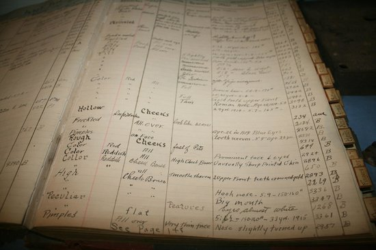 Gallatin History Museum: Ledger of inmates - read the details....they are funny!
