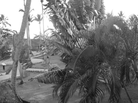 Grand Bahia Principe El Portillo: Vue de la chambre