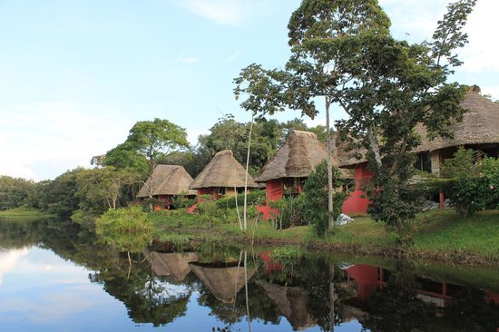 Napo Wildlife Centre: The lodge