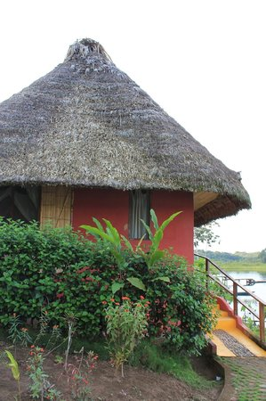 Napo Wildlife Center Ecolodge: Our Lodge facing the lagoon