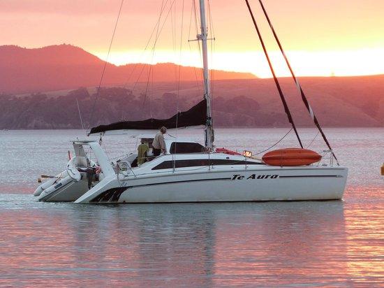 Island Sailing onboard Te Aura - Waiheke Island: The Catamaran