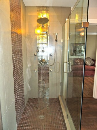 Inn BoonsBoro: Amazing Shower Jets