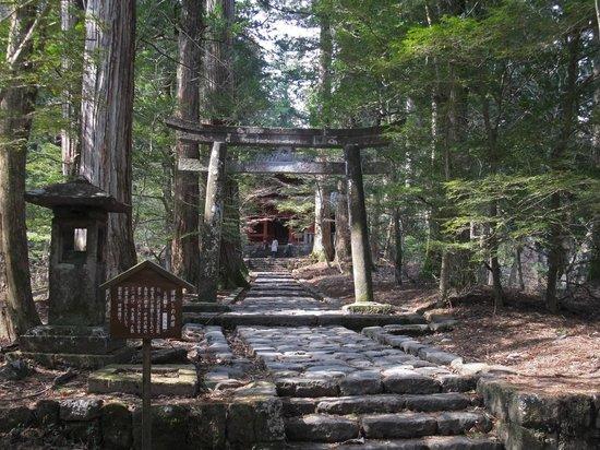 Takinoo Shrine: Takino-o Shrine