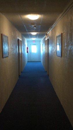 Sand Pebble Motor Lodge : dank hallway..smelled like cigarettes