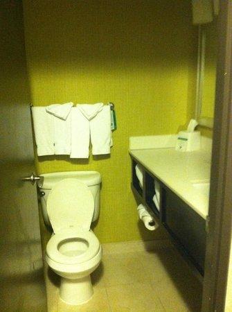 Holiday Inn Baltimore-Inner Harbor: bathroom