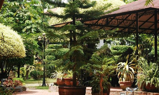 Precious Garden Samal: garden 3