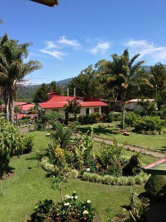 Doka Estate Coffee Tour: Doka Estate garden