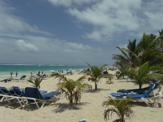 Occidental Caribe: Awesome beach, white sand.