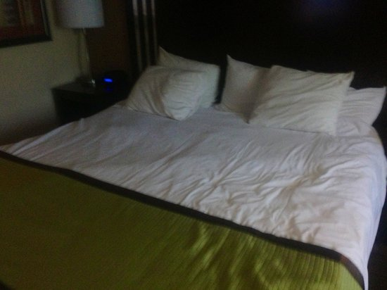 La Quinta Inn & Suites Davis: Guest Bed- King