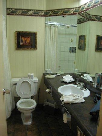 Hôtel Québec Inn : Chambre de bain
