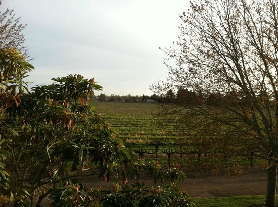 Vintners Inn: Another view