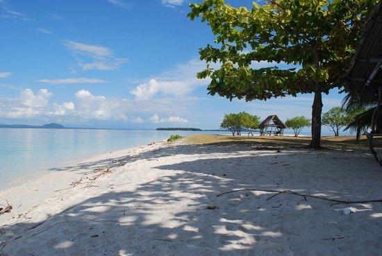 Digyo Island: :)