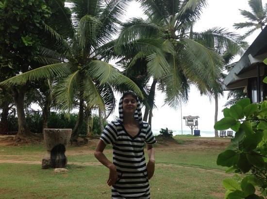Koggala Beach Hotel : Добавить подпись