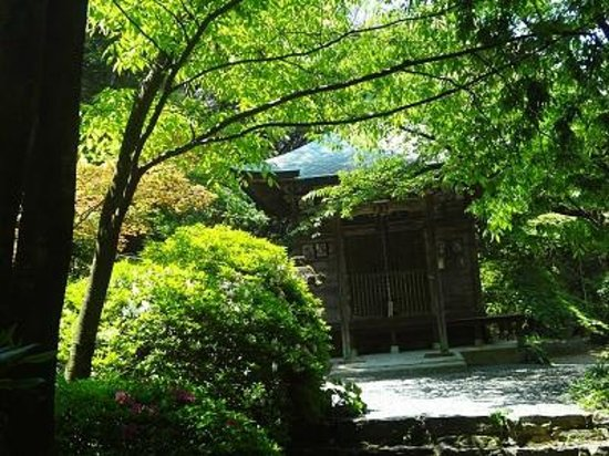 Miyama, Japan: 新緑が美しい!