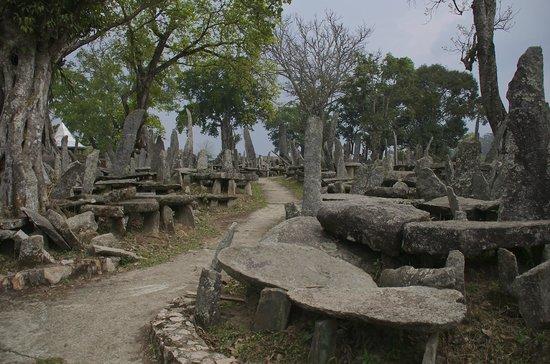 The Habitat Shillong : Nartiang Monoliths