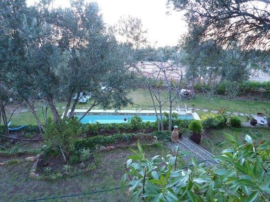 Dar Zitoune : la piscine vue du jardin