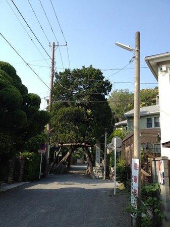 Egaraten Shrine: 参道 これだけでご利益ありそう(笑)