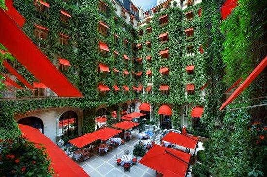 La cour jardin paris champs lys es restaurant avis for Jardin cour