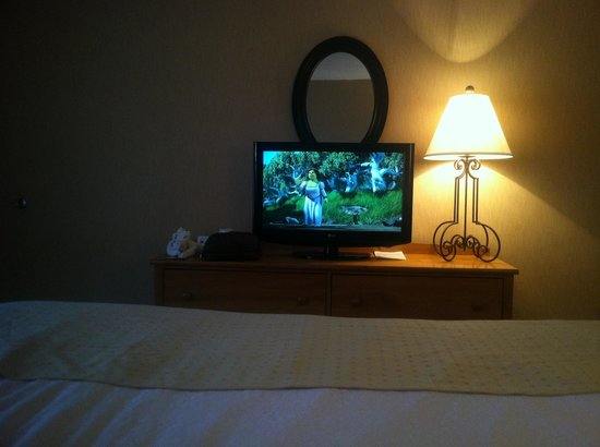 Quality Inn: Great TV