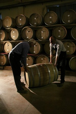 Tenuta Torciano: Winery