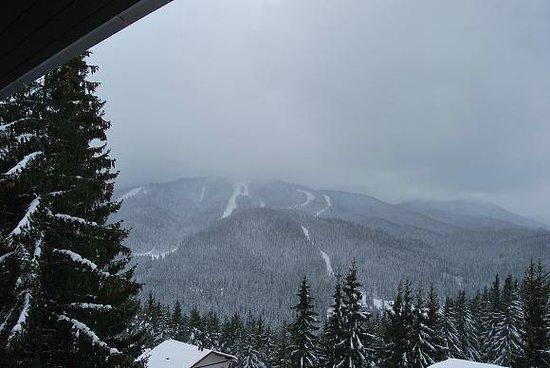 Rhodopa House : Ski runs in Pamporovo