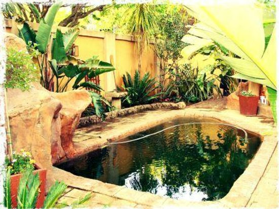 Casa Velha Guesthouse: Rock Pool
