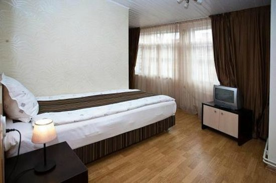 Pensiunea Vidalis : Single room