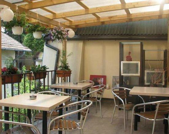 Pensiunea Vidalis : terrace