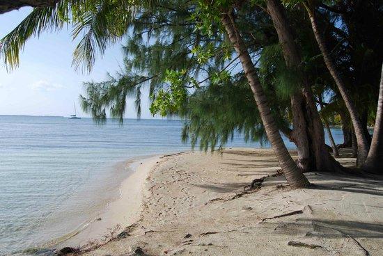 Pelican Beach - South Water Caye: blissful