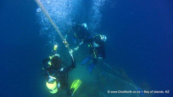 Dive North: Underwater world magic
