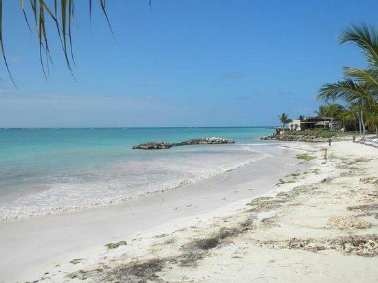 Sanctuary Cap Cana By Playa Hotels Resorts Beach