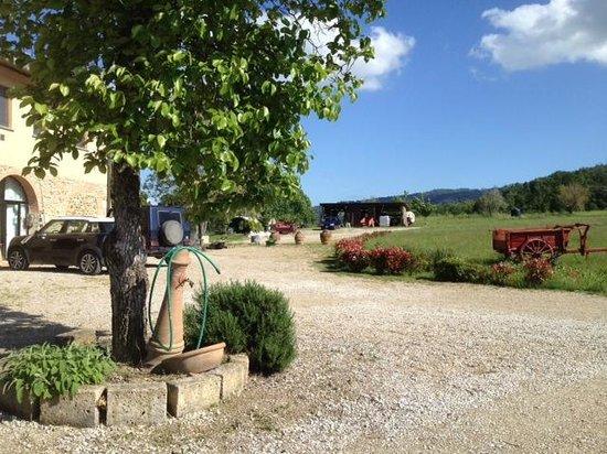Agriturismo Il Mulinaccio : Vista 1