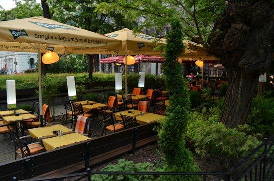 Karma Cafe & Restaurant : Очень уютное место!