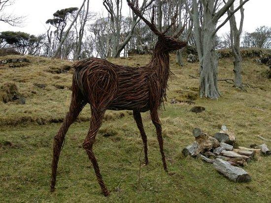Calgary Art in Nature: Deer watching