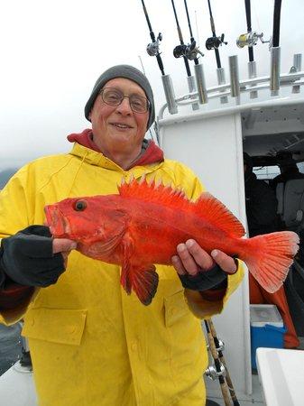 Deep Creek Fishing Club: Yellow Eye - Delish!