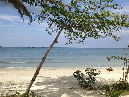 Mutiara Beach Guesthouse: Beautiful beach at Mutiara