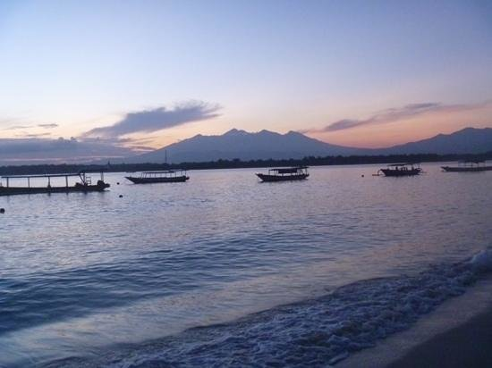 Blue Marlin Dive Gili Trawangan: Add a caption