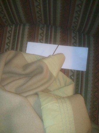 Savera Hotel: nail in blanket