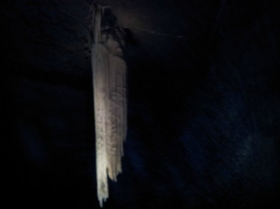 Doolin Cave : The great stalactite.